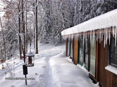 Cooper Lk All Season Romantic Cedar Log Cottage, Winter Special free Park Pass, WIFI, Snowshoes