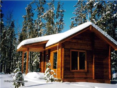 Mica Mountain Lodge & log cabins & side-by-side ATV tours