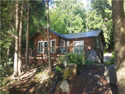 Hidden Gem Cottage - close to Haliburton, Minden, Dorest