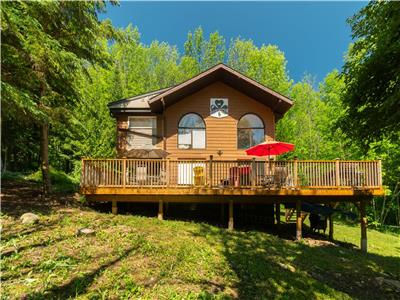 5 Bedroom 5 Washroom Hot Tub, Pool Table - 20 min from Blue Mountain - BBQ - Wifi - Fire pit