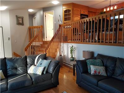 Beautiful walkout basement house, large deck, big private yard. 3-5 min from beaches and town.