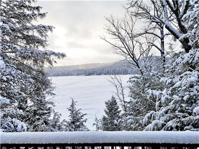 Rocky Moose Lake Cottage - Perfect WINTER GETAWAY!