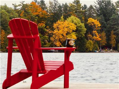 Paradise Lakefront Cottage on Lake St. George 3 bedroom sandy beach in Washago / Muskoka