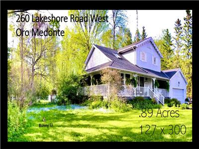 Fully Furnished, across the road from Lake Simcoe, 127 x 300 feet property, pool, hot tub, Tiki Bar