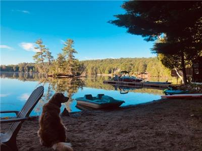 Haliburton Lake Retreat